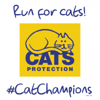 Run 4 Cats - LGE.jpg&width=200&height=200